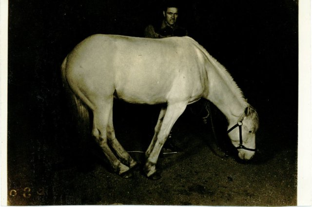 Jack Case archive: Jack with his white stallion, Chief